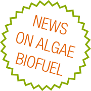 News on Algae Biofuels - Algae Observer