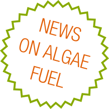Algae Fuel News